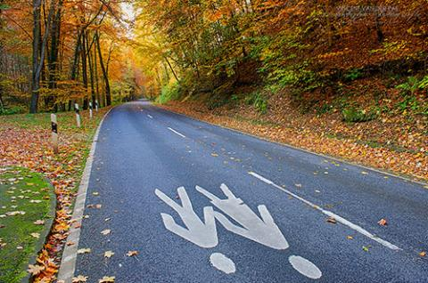 Photo of road with images of people painted on it.