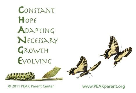 Graphic of change spelled out as acronym Constant Hope Adapting Necessary Growth Evolving