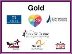 Gold Sponsors 2018